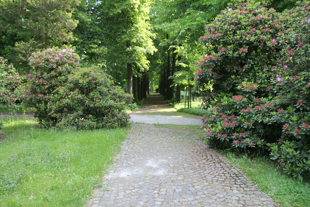 Freiflächenplanung Bürgerpark
