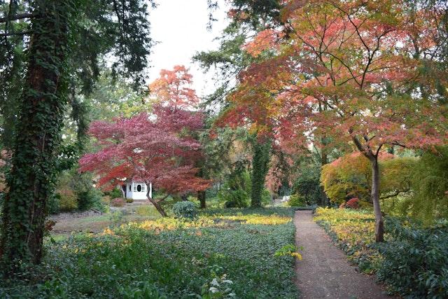 Planungsleistungen Botanischer Garten