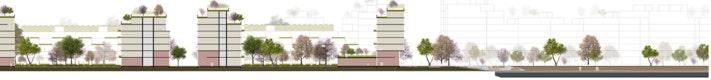 Schnitt durch Wohnbaufeld – Tiefe Erdgeschoßzonen ermöglichen eine flexible Nutzung