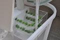 Hydrokulturplantage für Proteinriegel