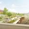 Rheintribüne als Hofgartenabschluss und neuer Veranstaltungsort am Wasser