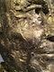 """""""EINER VON UNS"""" - Lebensgroße Bronze-Skulptur - Loriot ist von seinem Sockel gestiegen - ATELIER Achim Ripperger"""
