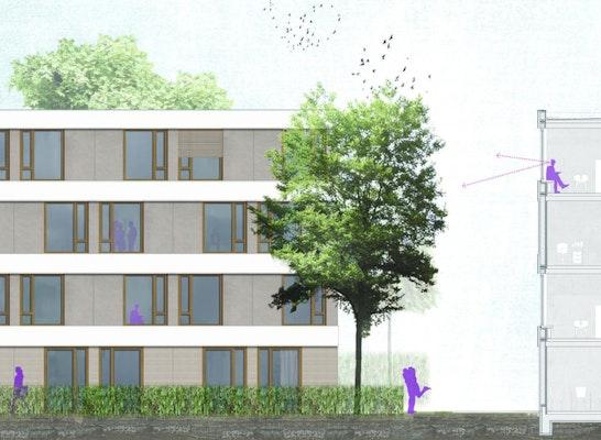 Ansicht - Fassadenschnitt