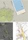 Details Wasserrelief - Beleuchtung - Verkehr