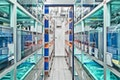 Fischzuchtstation mit S1 Labor, Max-Planck-Institut für Entwicklungsbiologie, Tübingen
