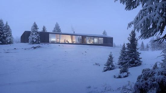 "Carraig Ridge - ""I"" House - exterior perspective"