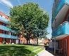 Hofbildungen und fließende Räume - Baufeld 3 der Baugenossenschaft dhu eG