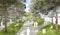 Perspektive in den Hofgarten