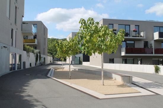 Friedensberg-Terrassen Jena