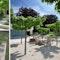 Gartenhof mit Amberbäumen und Rieselbelag aus Kalksplitt