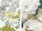 links Schinkelpreis Städtebau: Thomas Hartmann, Shaghajegh Einali;  rechts Schinkelpreis Landschaftsarchitektur + Schinkel-Italienreise-Stipendium: Sebastian Pietzsch, Martin Reil