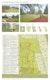 Blatt 1 mit Lageplan 1:1000, Perspektiven und Piktogrammen