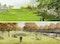 oben ein 1. Preis: POLA Landschaftsarchitekten, Berlin (DE);  unten ein 1. Preis: Weidinger Landschaftsarchitekten, Berlin (DE)