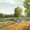 Malergärten im Gartenband